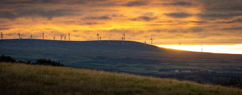 Entain makes carbon-neutral pledge